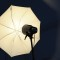 Am testat Elinchrom RX One